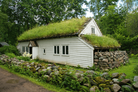 Зелень на крыше дома
