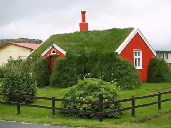 Дом с травой на крыше
