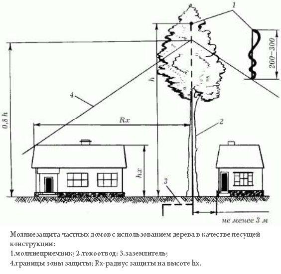 Схема использования дерева в качестве несущей конструкции